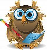Owl Secretary