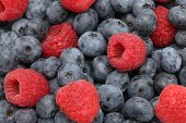 Ripe Blueberry And Raspberry