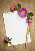 Notebook With Pen And Asters
