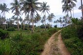 Gravel Road At Rural Area