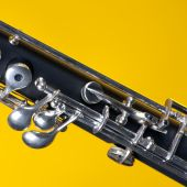 Oboe Isolated On Yellow