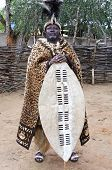 The Great Zulu King