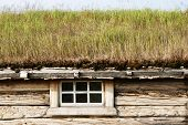 Cottage With Green Roof