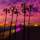 Santa Monica California sunset on Pier Ferrys wheel and reflection on beach wet sand photo illustration