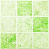 Flagstone Walkway Green Background.