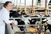 Happy woman in white coat looks at small calves at large farm.