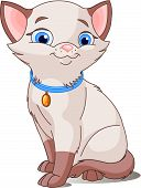 Постер, плакат: Симпатичные кошки