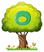Illustration of a tree with a letter O on a white background