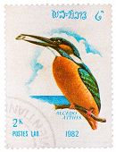 Stamp Printed In Laos Shows Common Kingfisher (alcedo Atthis), From Series Birds