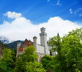 View Of Neuschwanstein For Forest