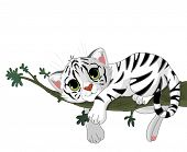 image of white tiger cub  - Cute white Tiger rest on a branch - JPG