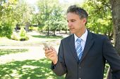 Mature businessman text messaging through smart phone in park