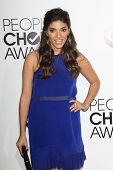 LOS ANGELES - JAN 8: Amanda Setton at The People's Choice Awards at the Nokia Theater L.A. Live on J