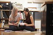 Two Businesswomen Sit On Office Floor With Digital Tablet