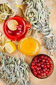 Red Cranberries, Jar With Honey, Fruit Tea Cup, Healing Herbs And Lemon, Top View