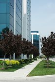 pic of business-office  - Business office buildings with path and trees - JPG