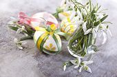 Easter eggs and primroses