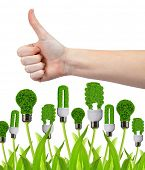 Hand with thumb up and eco energy bulbs isolated on white. Green energy concept