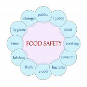 Food Safety Circular Word Concept
