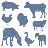 Set Of Farm Animals Silhouettes