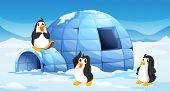 Illustration of the three penguins near an igloo