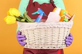Housewife holding basket with cleaning equipment on color background. Conceptual photo of spring cle