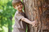 Portrait of young boy hugging a tree at the park