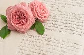 Pink Rose Flowers Over Antique Handwritten Letter