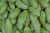 picture of bitter melon  - The bitter melon sold in grocery stores - JPG