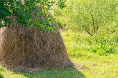 Rural Landscape With Haystack