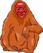 Uakari Animal Cartoon Illustration
