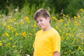 picture of tansy  - Boy on meadow with tansy in summer - JPG