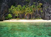 The beach on a tropical island.