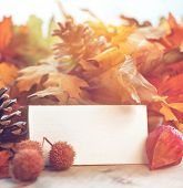 Autumn background with blank white card with copyspace