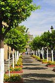 Plaza Tapatia Leading To Hospicio Cabanas In Guadalajara, Jalisco, Mexico