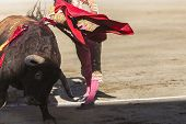 image of baeza  - Bullfighter bullfighting with the crutch in the Bullring of Baeza Jaen province Andalusia Spain - JPG
