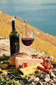 Wine and chese. Lavaux region, Switzerland