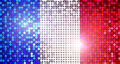Brillante bandera de Francia