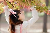 picture of lolita  - Japanese girl in lolita cosplay fashion looking autumn leaves in a Tokyo park - JPG