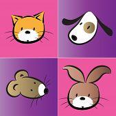 vector pets icon