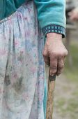 Grandmother Holding A Cane