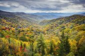stock photo of gatlinburg  - Dawn in the Smoky Mountains National Park - JPG