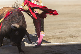 foto of bullfighting  - Bullfighter bullfighting with the crutch in the Bullring of Baeza Jaen province Andalusia Spain - JPG