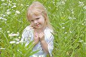 little blond girl in wild daisies