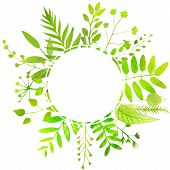 summer round frame with bright green leaves.