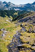 Stream of glacier melt along the hiking trail of Mt. Rainier