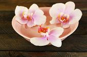 Bowl with orchids on wooden background