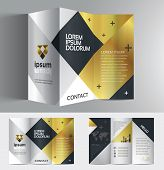 Vector graphic elegant business brochure design for your company in silver black and gold color