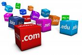 Web And Internet Domain Names