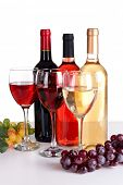Different wine isolated on white